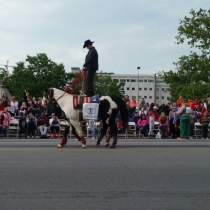 Pegasus parade davis ranch