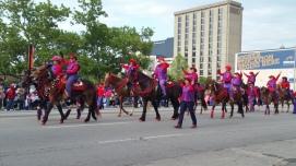 Pegasus parade horses