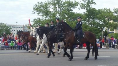 Pegasus parade louisville's finest_1462839331283