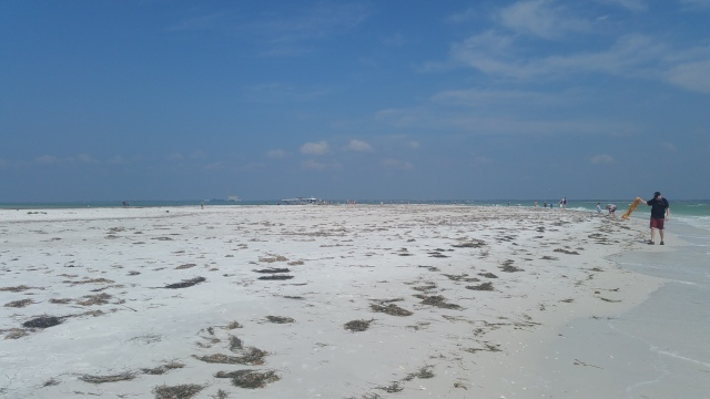Anclote Key Sand