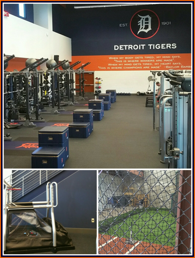 Detroit Tigers Training Toger Town