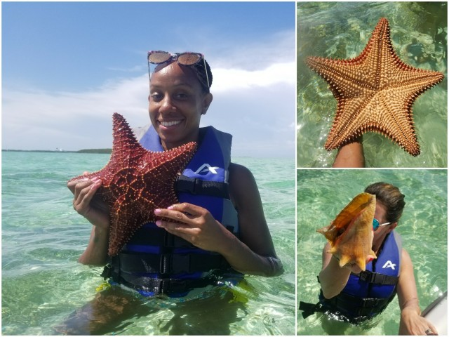 Starfish Great stirrup cay