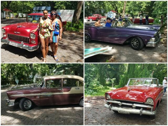 Vintage Cars Havana Cuba Forest