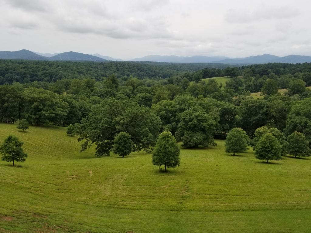 George Vanderbilt Land in Asheville, NC
