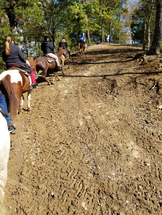 Pigeon Forge Horseback Riding