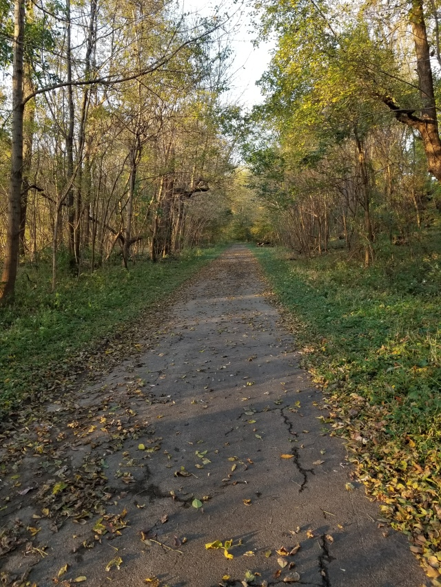 shawnee park louisville loop